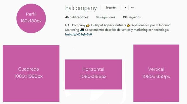 hal_company_tamaños_instagram.jpg